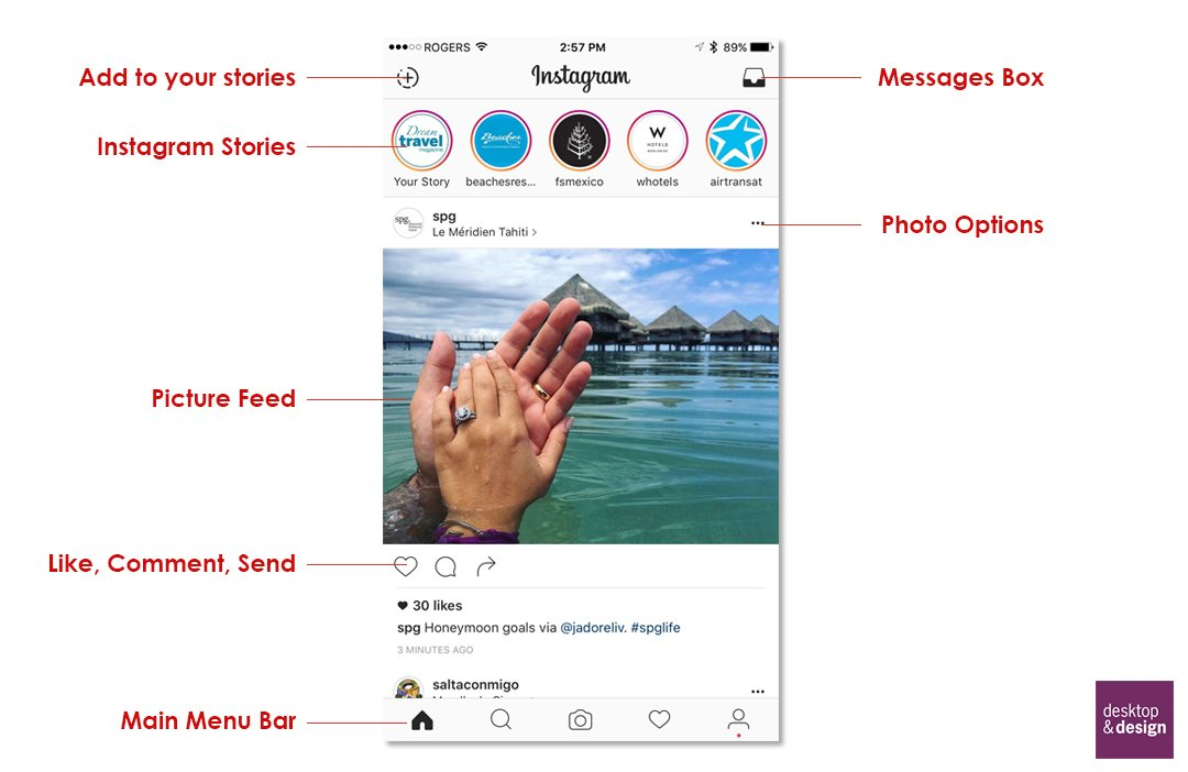 Beginners Guide to Instagram for Adults Home Screen Explained