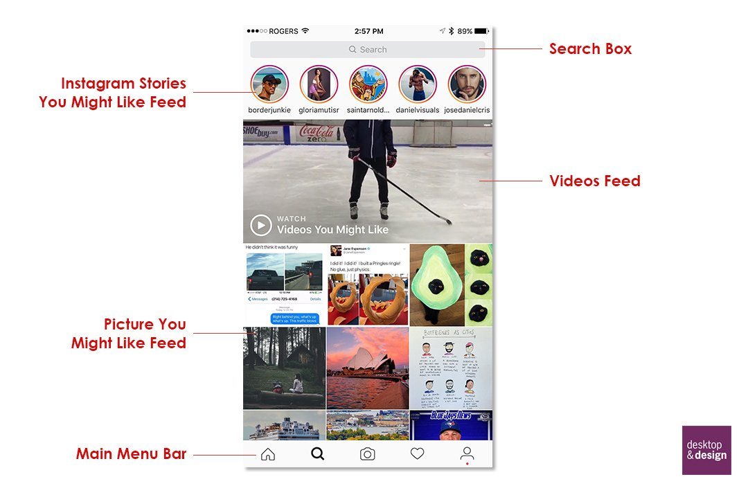 Beginners Guide to Instagram for Adults Search Screen Explained